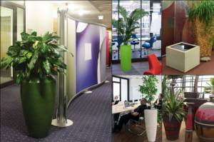Decoration with plants and fountains: